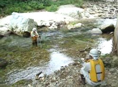 低水流量観測